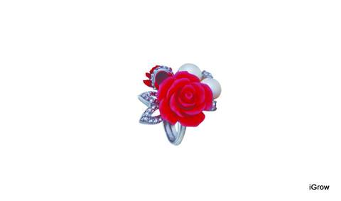 Tanya Rossi Ring - Rs. 4100
