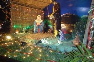 Christmas-2012107